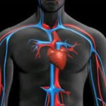 trastornos cardiacos